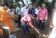 Planting Trees in the TOT training on 'Laudator Si' Handbook